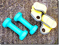 The Home Gym - hand weights