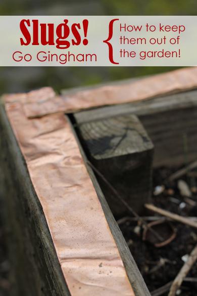 Copper roofing tape garden Go Gingham