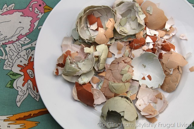 Go Gingham: Egg shells in the garden