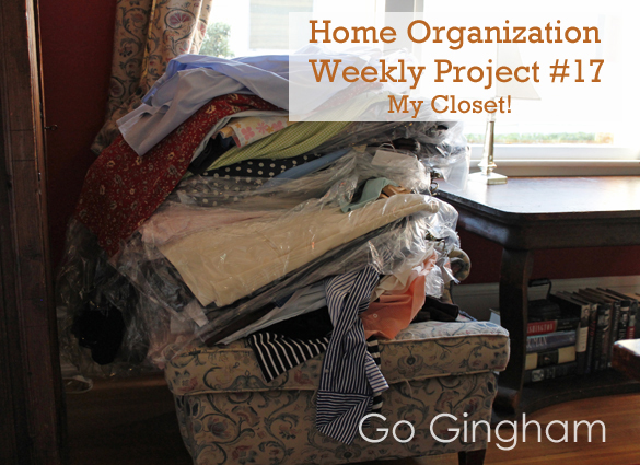 Home Organization week #17 with Go Gingham