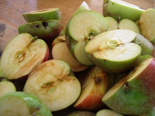 Good parts of apples