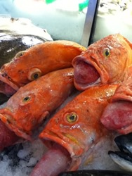 Seattle is for food lovers! Fresh fish.