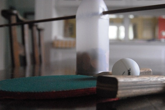 Dining Room Table Ping-Pong
