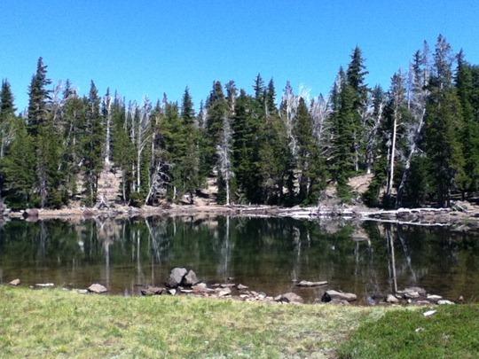 Three creeks lake, little creek