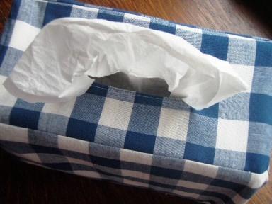 Go Gingham: Tissue box slipcover
