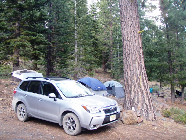 Subaru Forester Camping Adventure