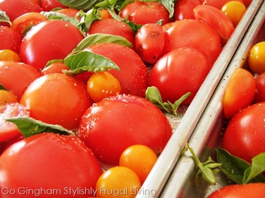Go Gingham: Tomatoes from garden