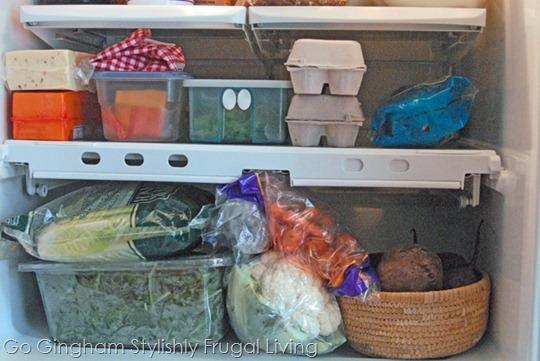 Sara Tetreault refrigerator