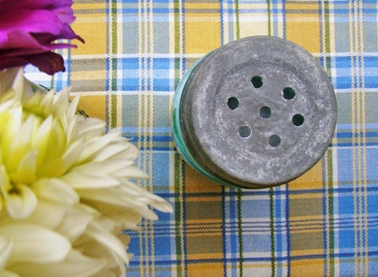 Go Gingham: How to make a baking soda shaker