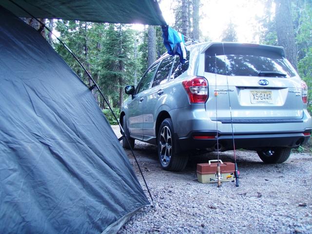 Go Gingham camping adventure
