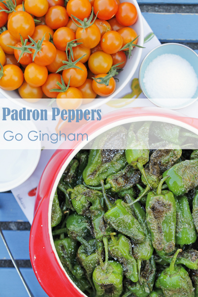 Padron Peppers Go Gingham