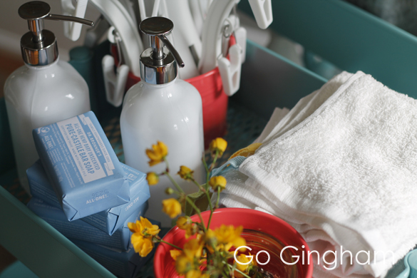 Soap and wash cloths Go Gingham