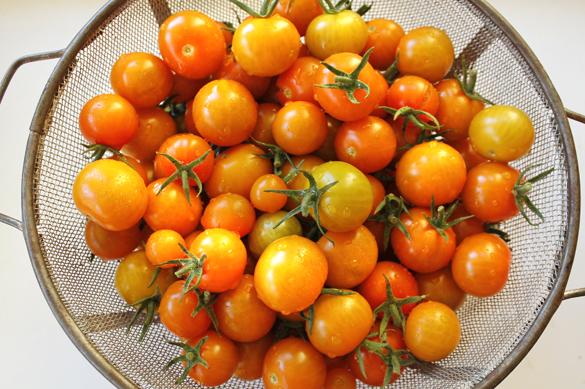 Buying organic veggies from Go Gingham Stylishly Frugal Living