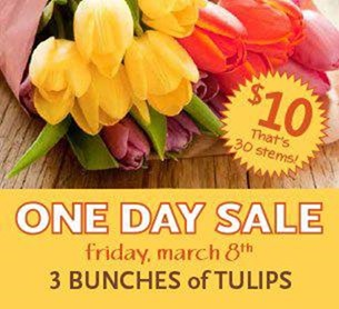 Tulips One Day Sale