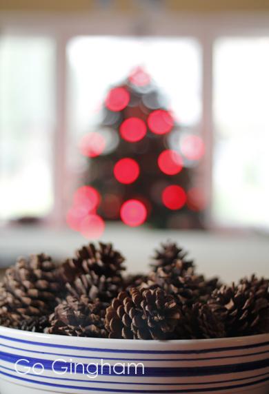 Pine Cones Go Gingham