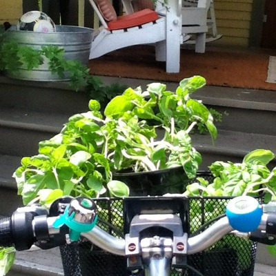 Green Living Drive Less + Ride Bikes Go Gingham